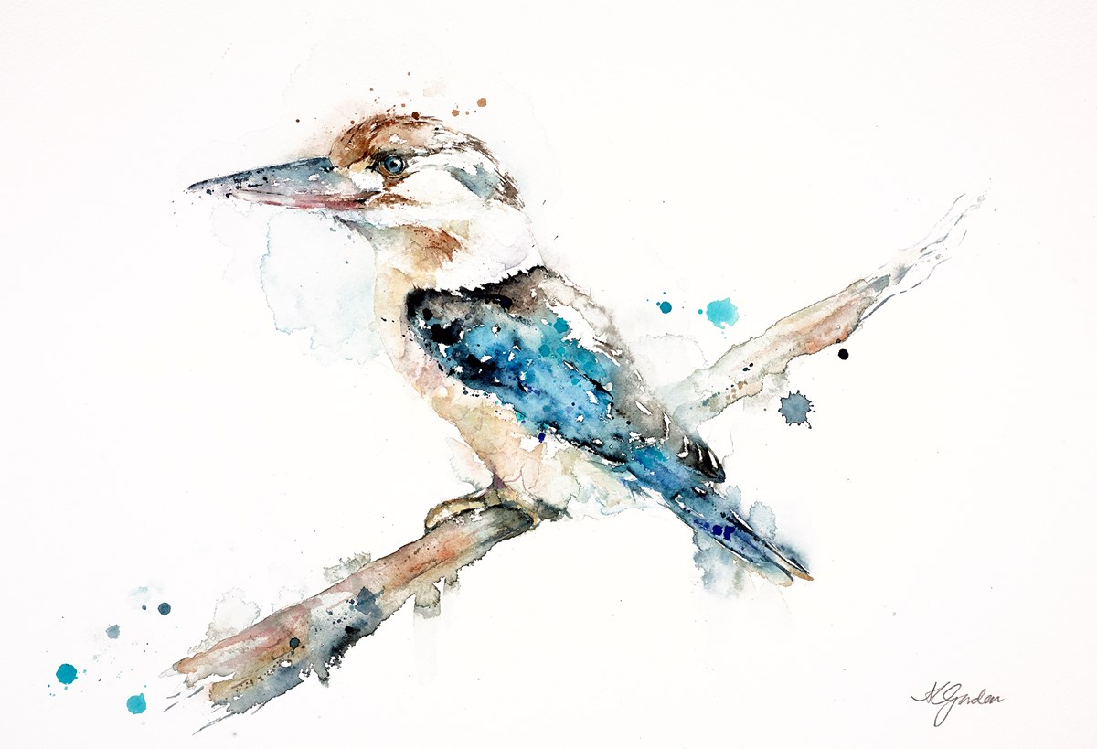 Blue-Winged Kookaburra by amanda gordon -  sized 16x12 inches. Available from Whitewall Galleries